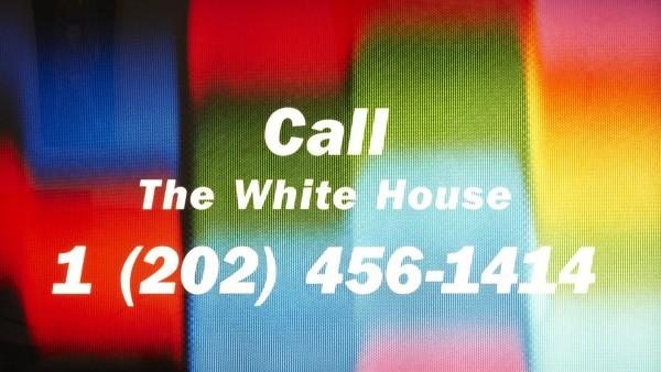 Call the White House, 1990