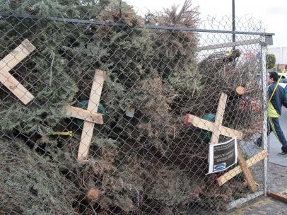 Árboles de navidad reciclados