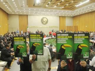 Partido Verde.