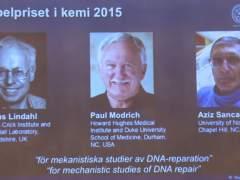 Tres científicos ganan el Nobel de Química por estudio del ADN
